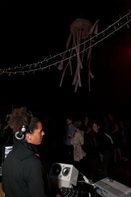 JoHempel_201508_Veranstaltung_keine-Rhizombar_Nordbruecke_Bonn_DSC_7073_A Kopie